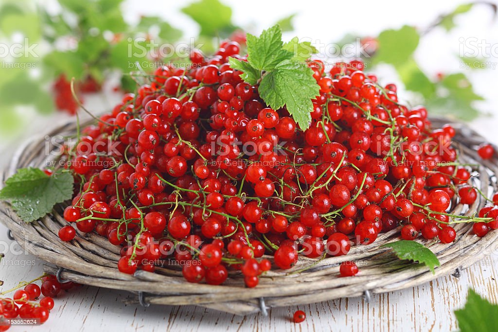 fresh redcurrant on the white wooden background stock photo