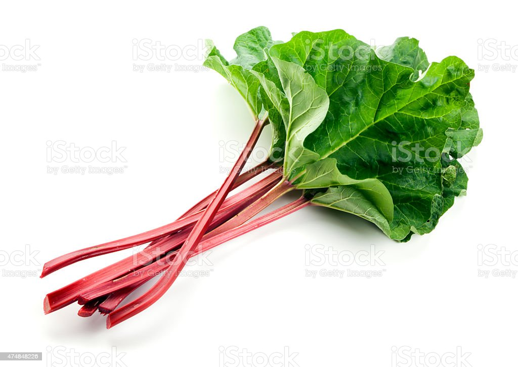 Fresh Rhubarb Isolated stock photo