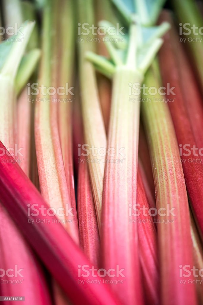 Fresh Rhubarb Stalks For Sale at a Farmers Market stock photo