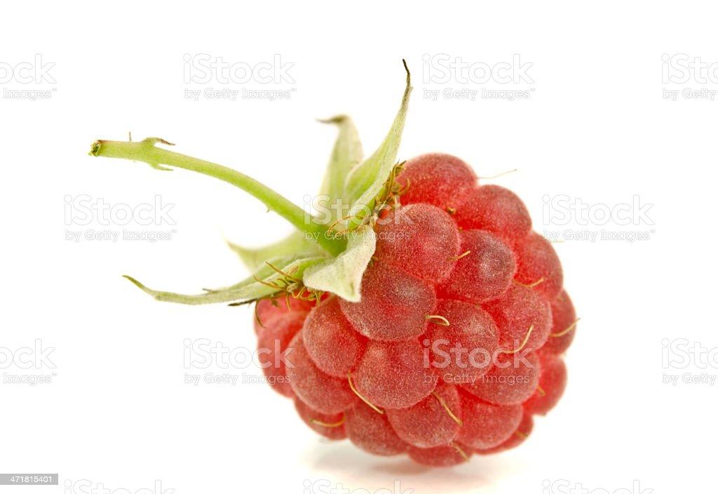 Fresh ripe raspberry royalty-free stock photo