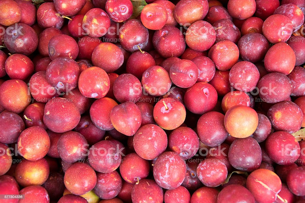 Fresh ripe red plums as a background stock photo