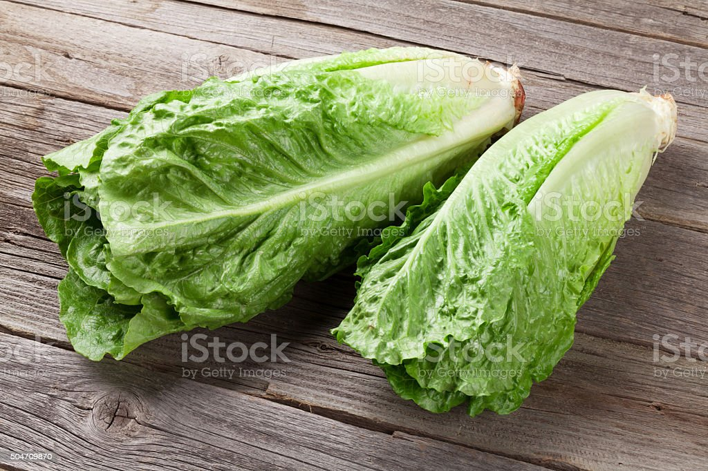 Fresh Romano salad stock photo