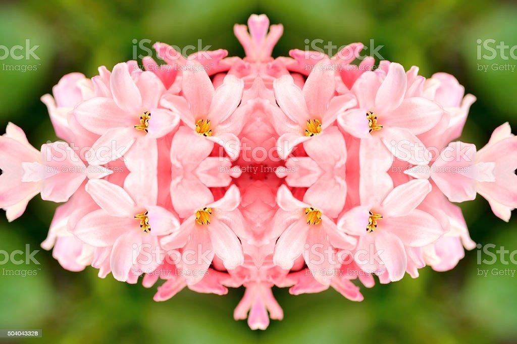 quartz rose rose jacinthe des fleurs en forme symétrique