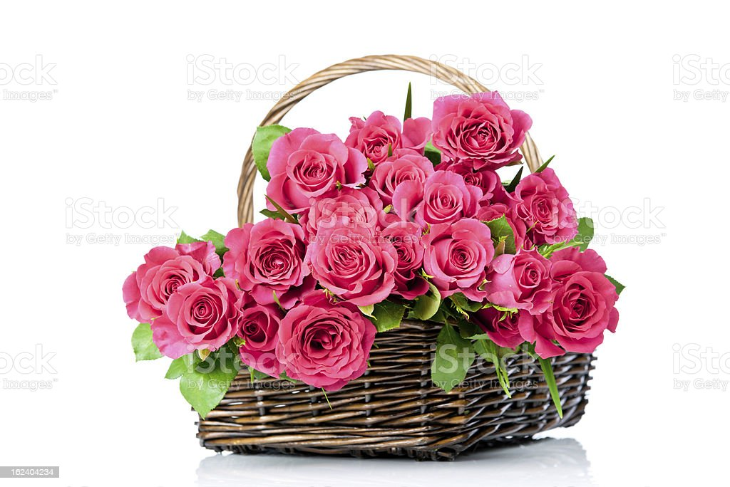 Fresh roses in the wicker royalty-free stock photo