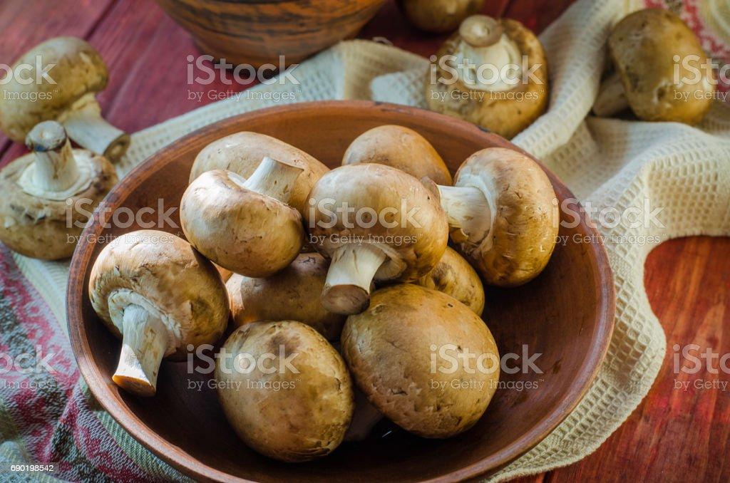 Fresh royal mushrooms stock photo