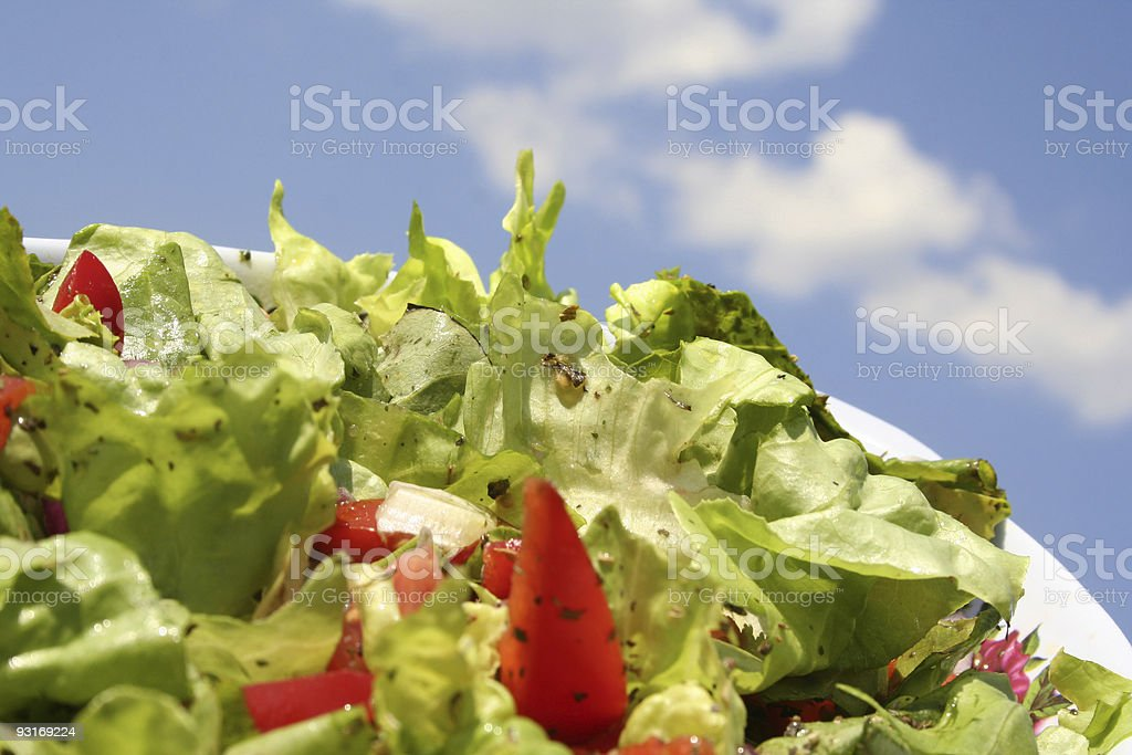 Fresh salad and tomato on blue sky royalty-free stock photo