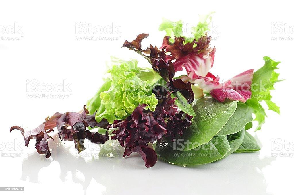 fresh salad leaves royalty-free stock photo