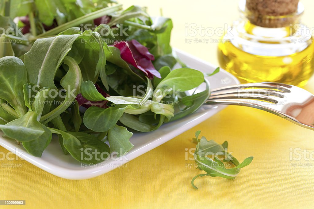 fresh salad on a plate stock photo