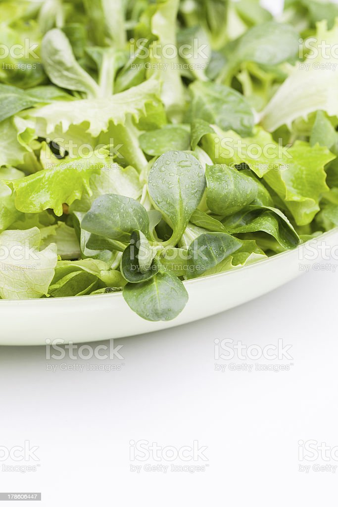 Fresh salade royalty-free stock photo