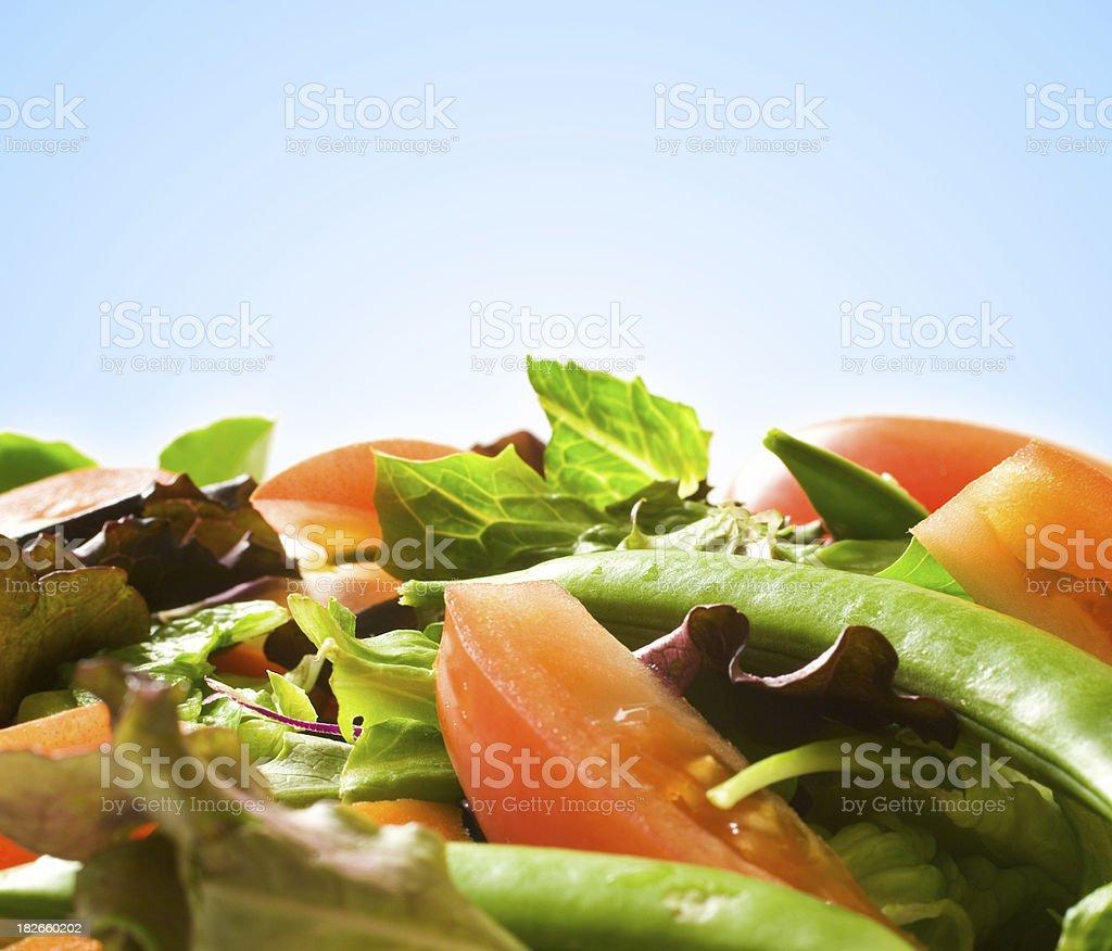 Fresh Salad (blue background) royalty-free stock photo