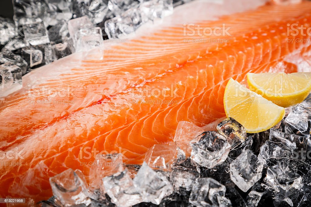 Fresh Salmon Fish  on the Black Background stock photo