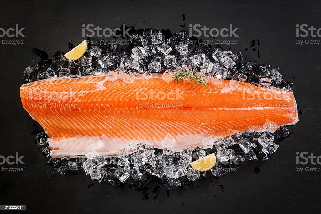 Fresh Salmon Fish  on the Black Background stock photo