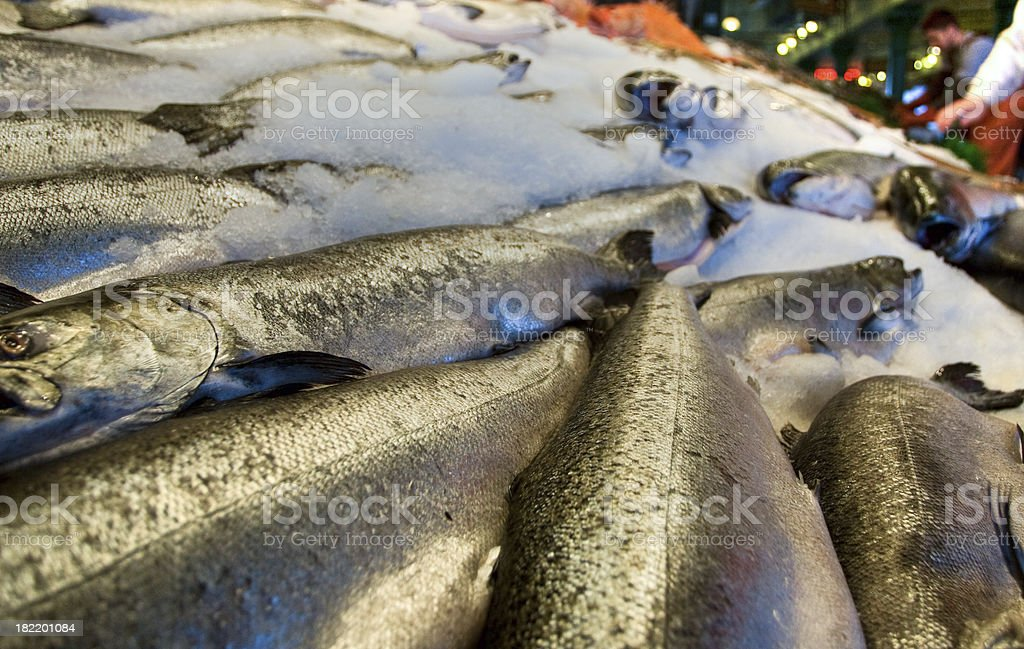 Fresh Salmon in the Market royalty-free stock photo