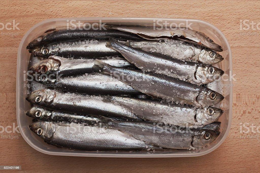 Fresh salted herring in box stock photo