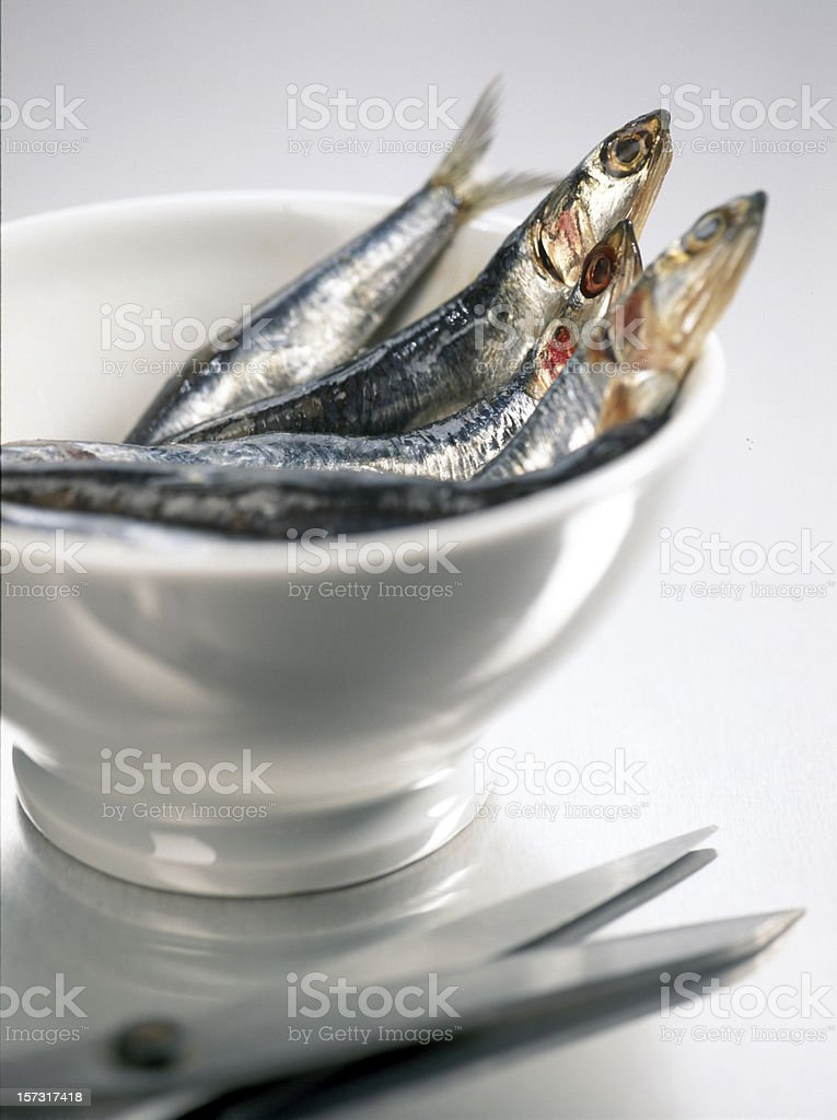 fresh sardines in bowl royalty-free stock photo