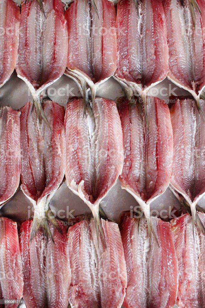Fresh sardines stock photo