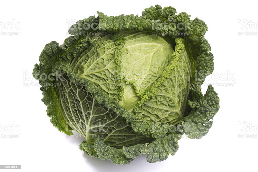 fresh savoy cabbage royalty-free stock photo