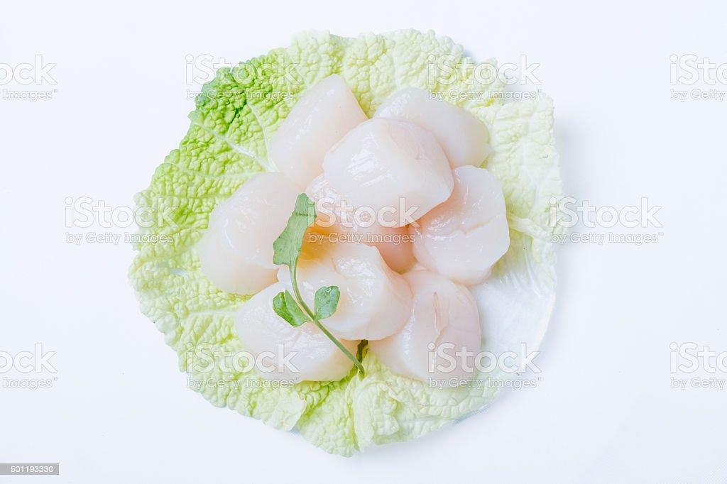 Fresh scallops stock photo