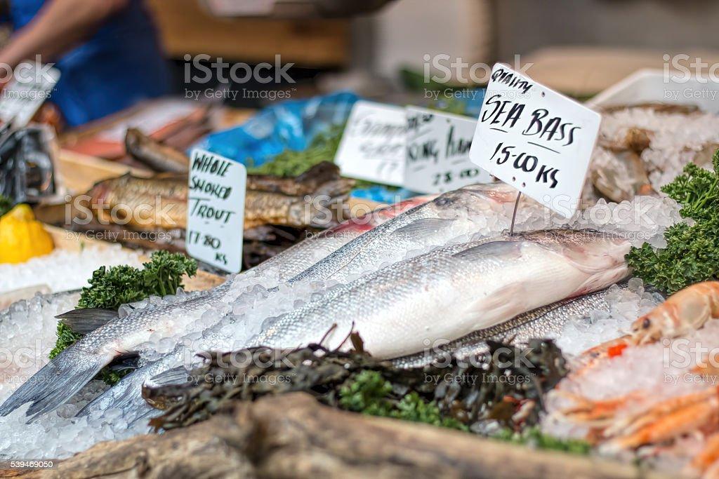 Fresh sea bass and seafood at market counter. stock photo