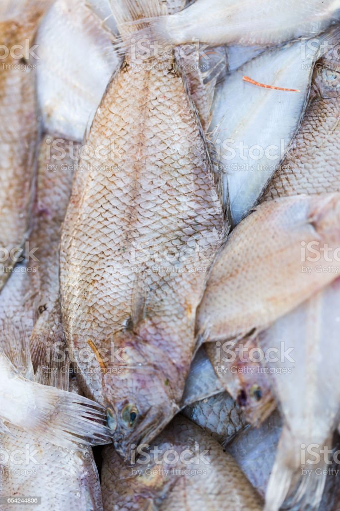 Fresh sea food ready for sell on fish market in Essaouira in Morocco. Maro close up stock photo