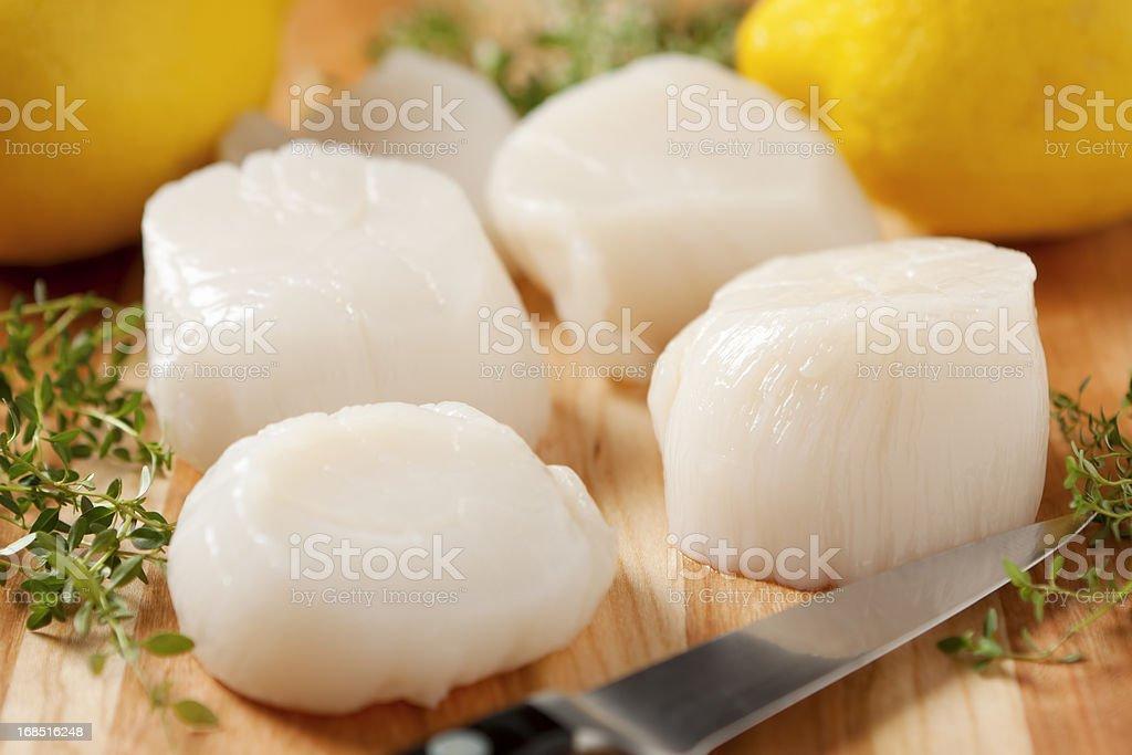 Fresh sea scallops with knife and lemon stock photo