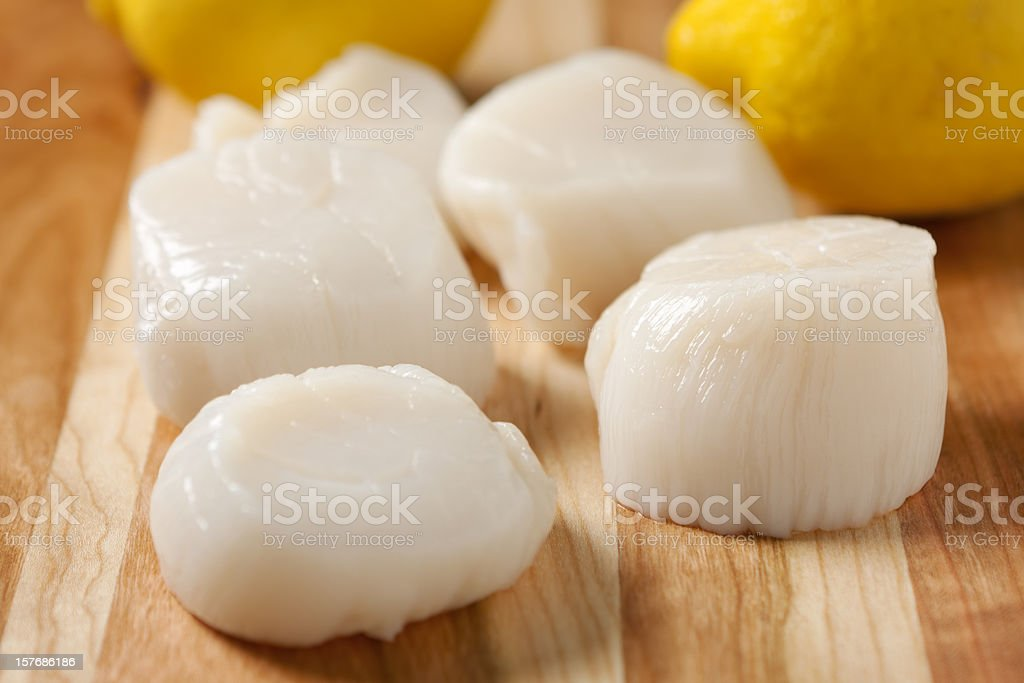 Fresh sea scallops with lemons in the background stock photo