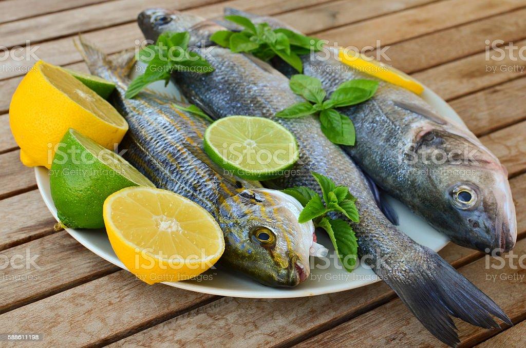 Fresh seabass and goldline fish stock photo