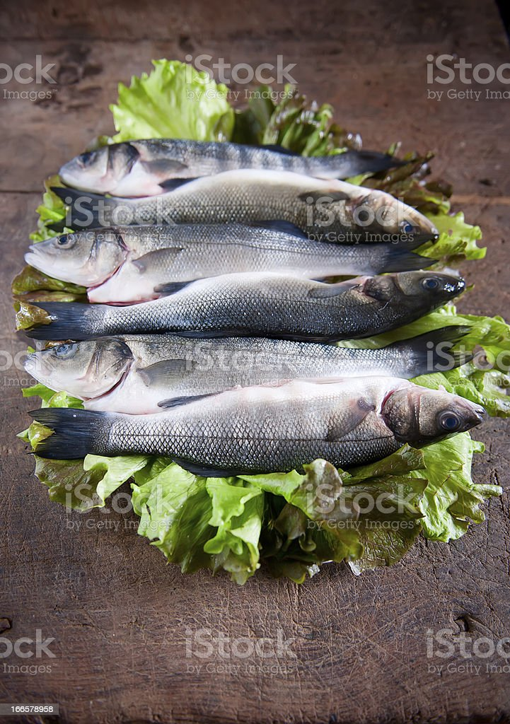 Fresh Seabass ready to cook royalty-free stock photo