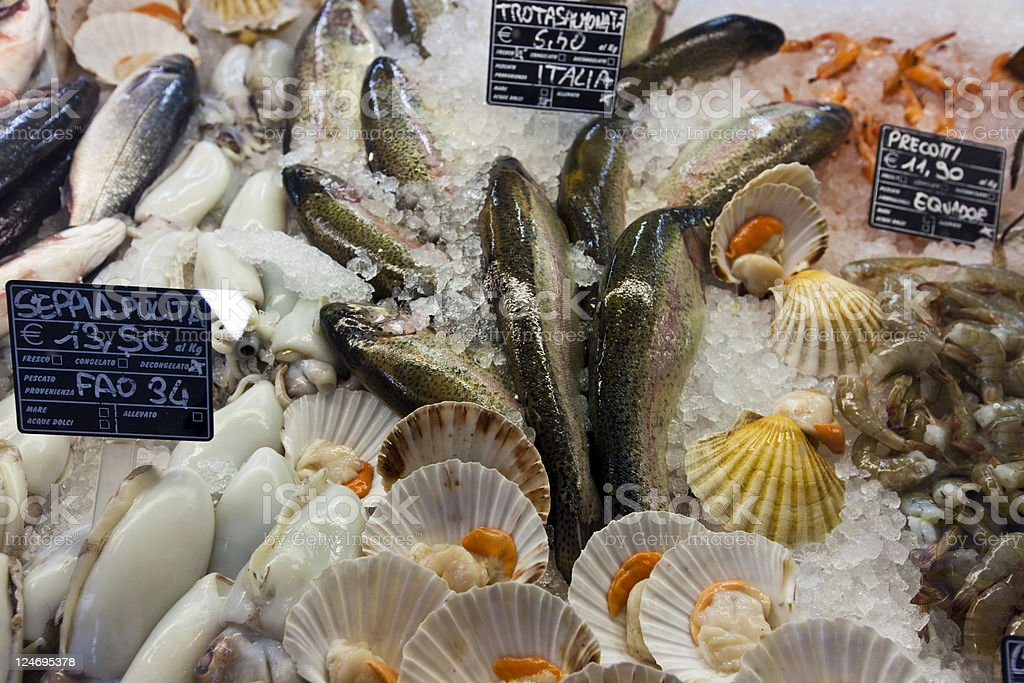 Fresh seafood from the fish market royalty-free stock photo