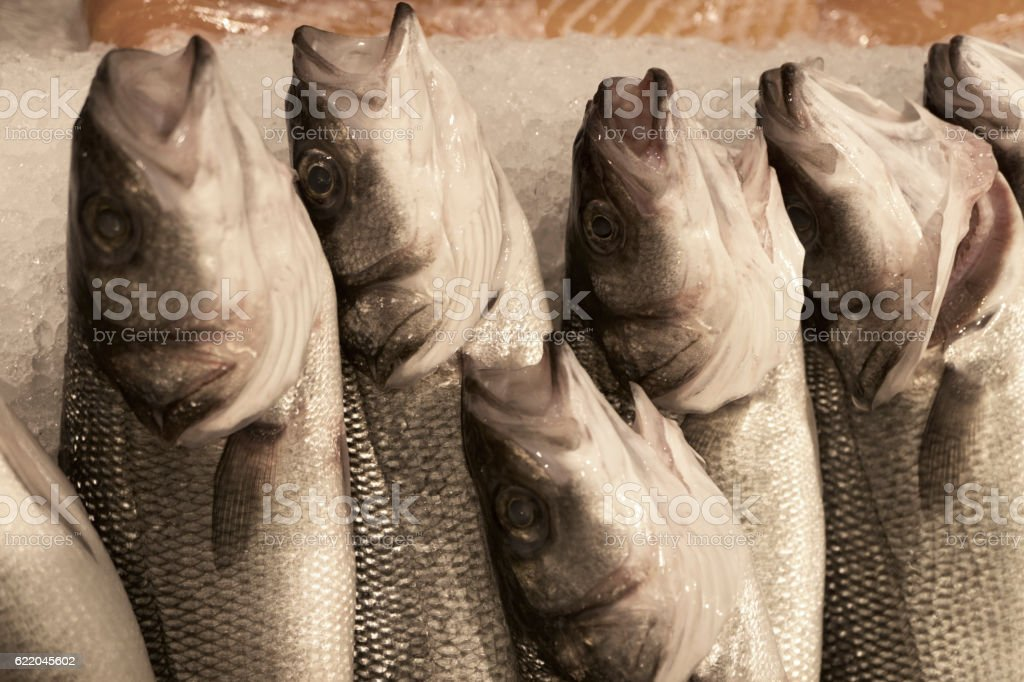 Fresh Seafoods Background stock photo