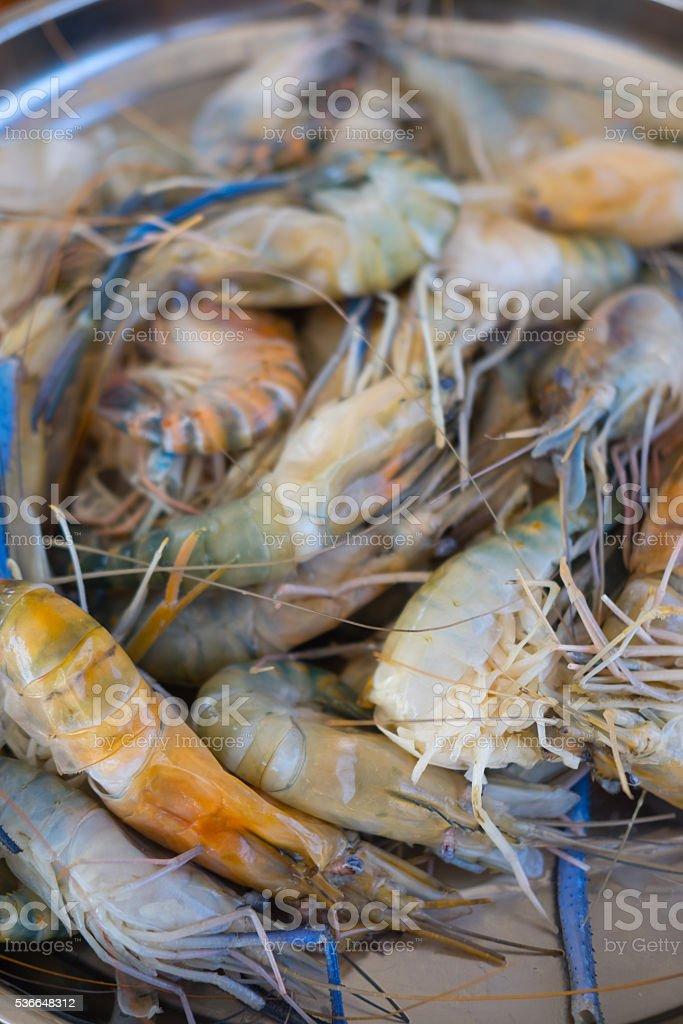 Fresh shrimp or Fresh big Lobster stock photo