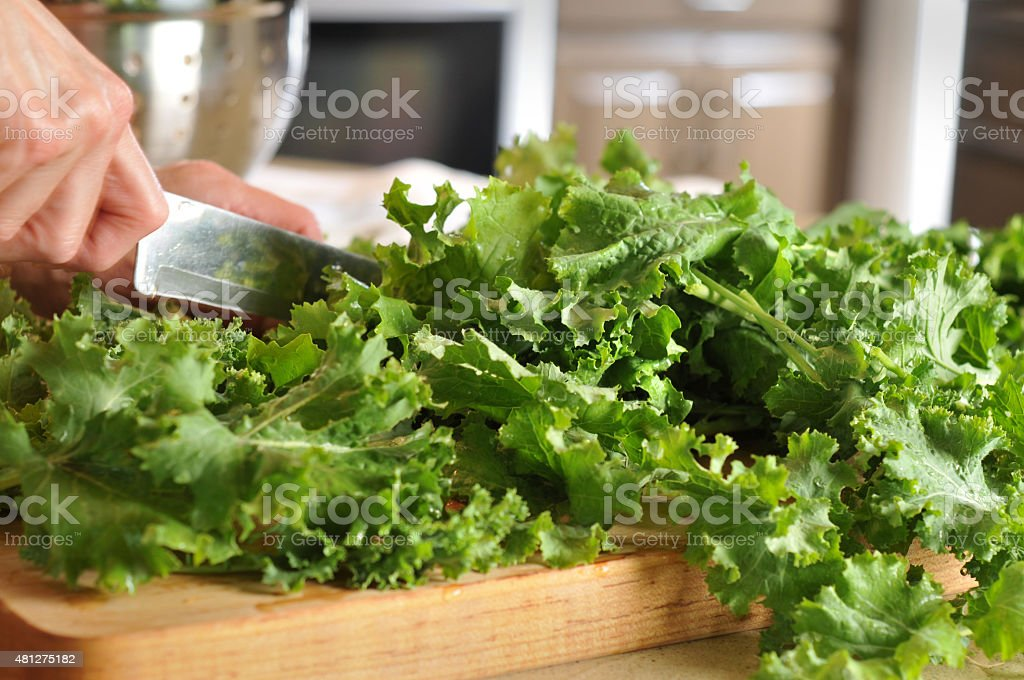 Fresh Siberian Kale on a Cutting Board in a Kitchen stock photo