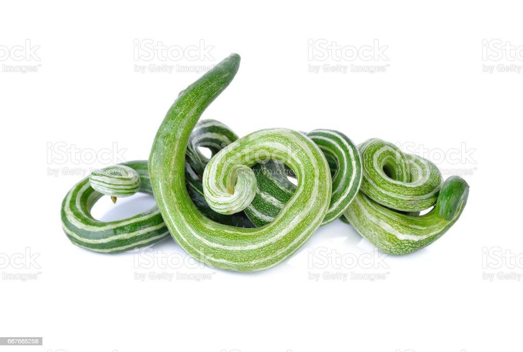 fresh Snake gourd (luffa) on white background stock photo