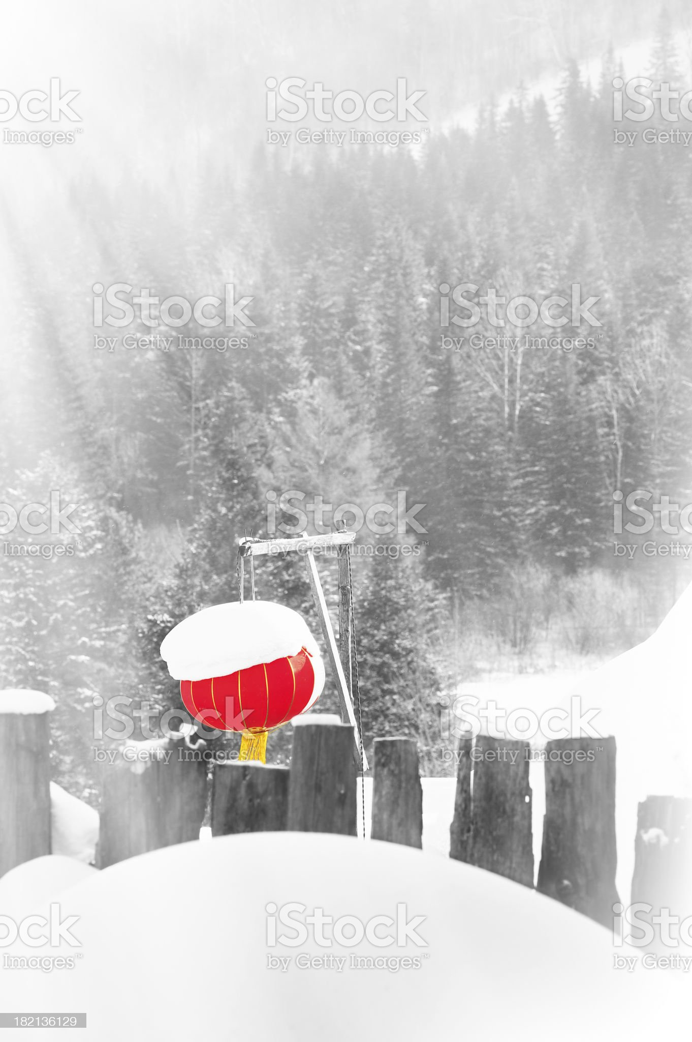 Fresh snow cover at winter royalty-free stock photo