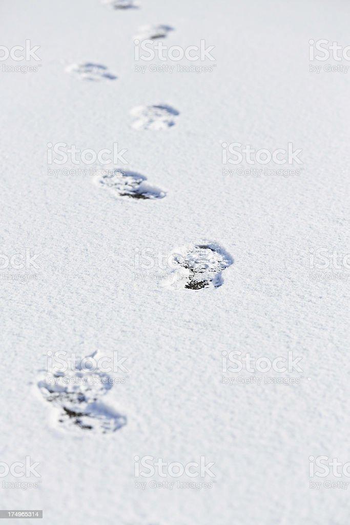 Fresh Snow Foot Prints stock photo