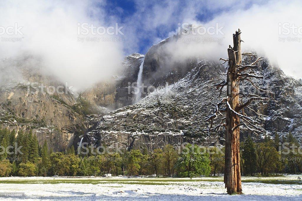 Fresh Snow in Yosemite Falls stock photo