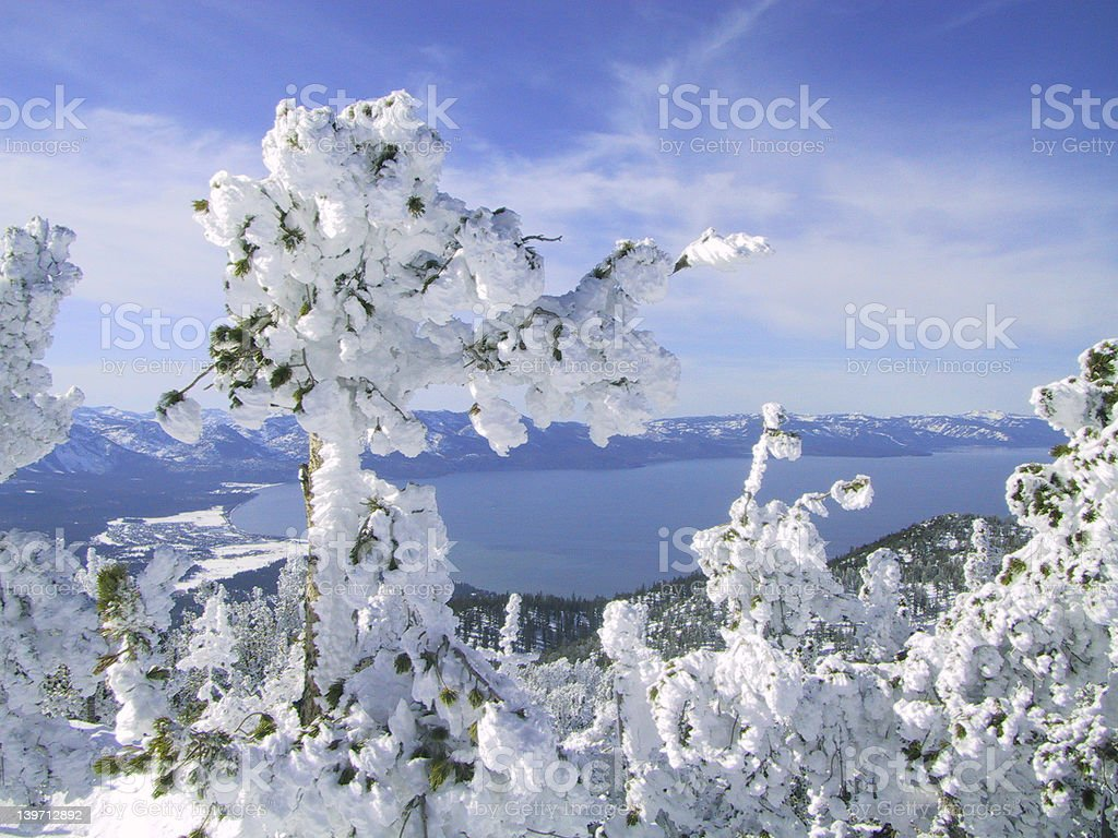 Fresh Snow, Lake Tahoe royalty-free stock photo