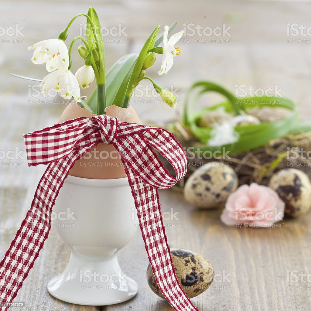 Fresh snowdrops in eggshell stock photo