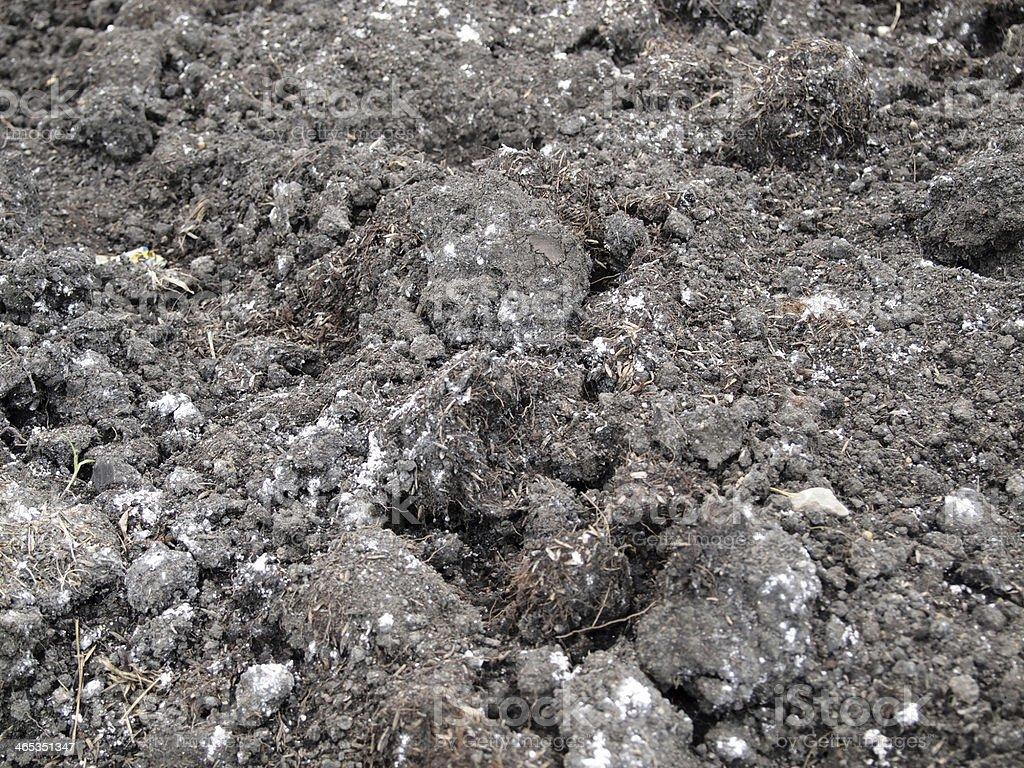 Fresh soil background closeup royalty-free stock photo