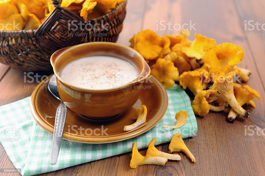 fresh soup of golden chanerelle mushroom stock photo