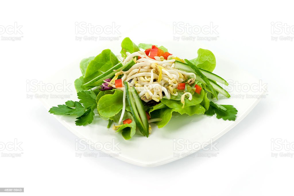 Fresh soy sprouts salad stock photo