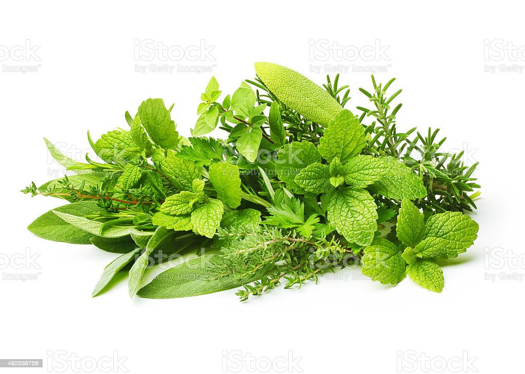 Fresh spices herbs isolated stock photo