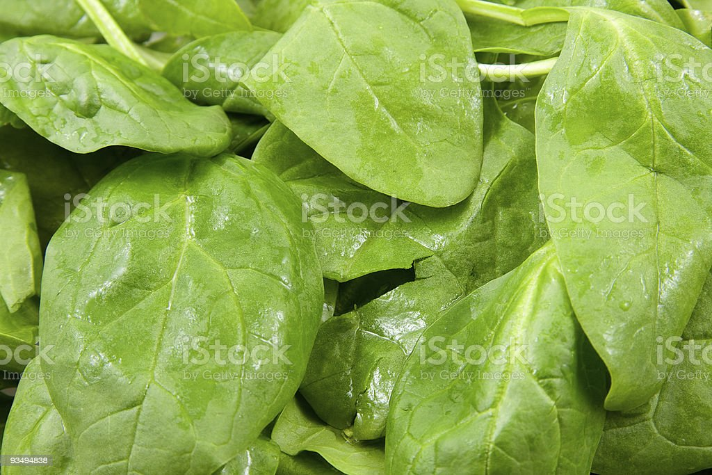 Fresh spinach in closeup stock photo