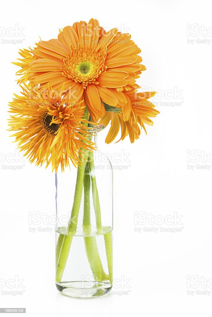 Fresh Spring Bouquet royalty-free stock photo
