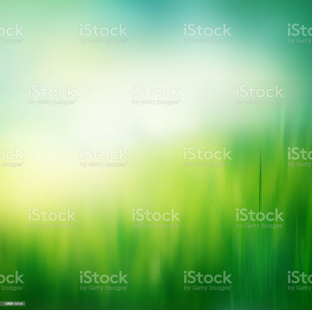Fresh spring grass background stock photo
