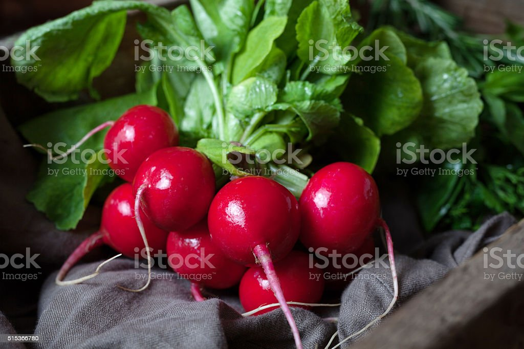 Fresh spring harvest of radishes healthy organic nutrition food stock photo