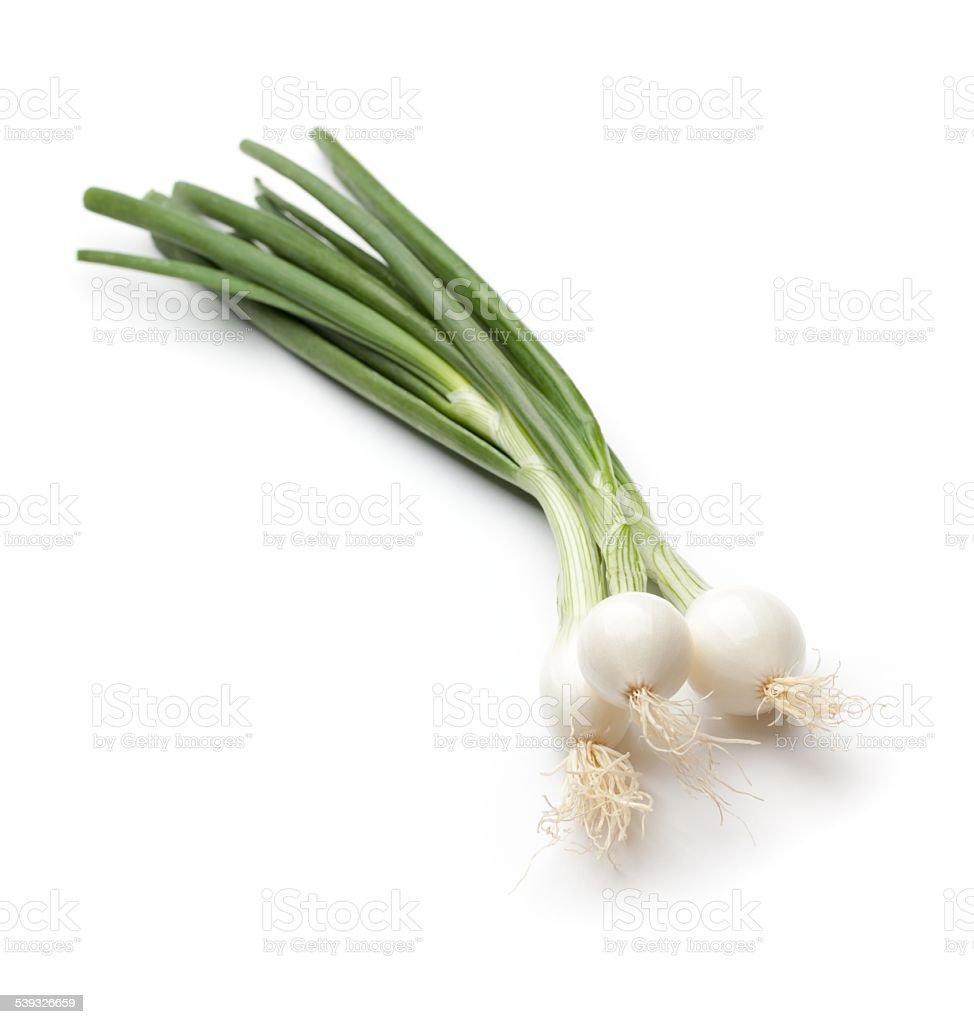 Fresh Spring Onion on white background stock photo