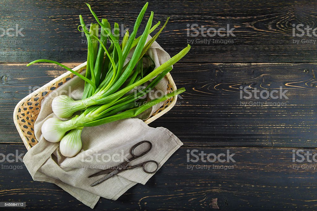 Fresh spring onions and old scissors stock photo