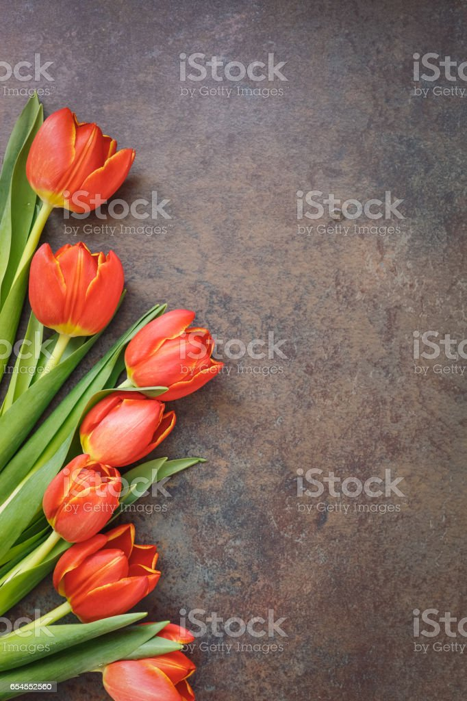 Fresh spring tulips on rustic stone background stock photo