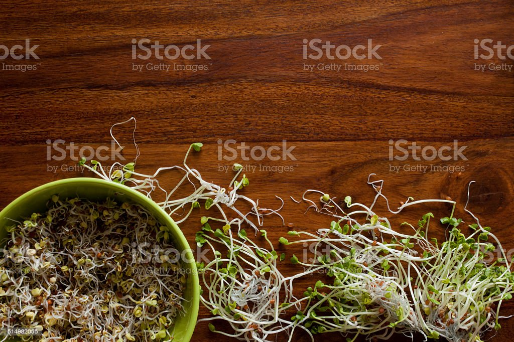 Fresh sprouts in bowl stock photo